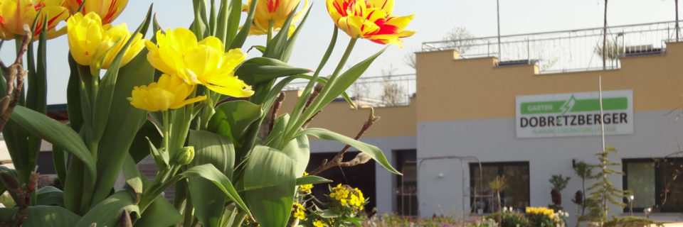 Willkommen bei Garten Dobretzberger